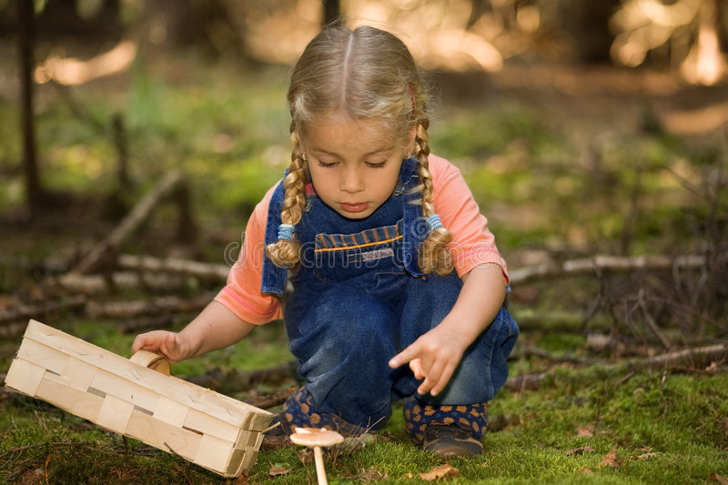 Girl with fungi stock photos