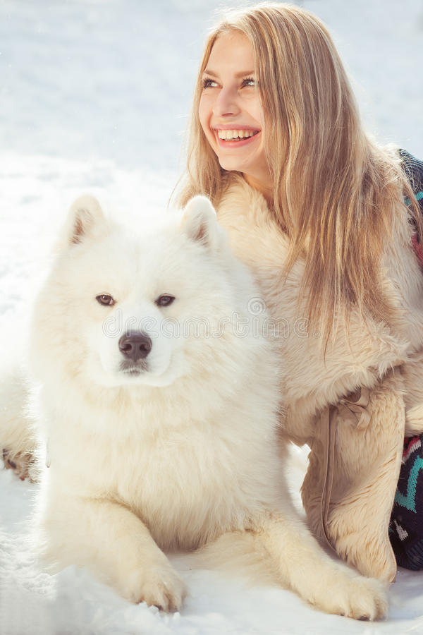 Download Girl with samoed dog stock image. Image of clever, casual - 29703729
