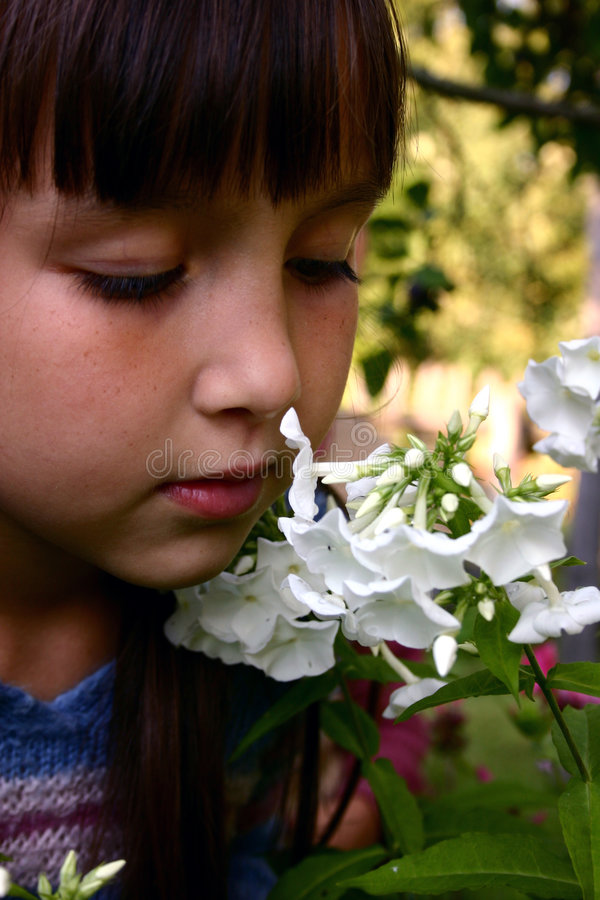 Girl in the garden stock photography