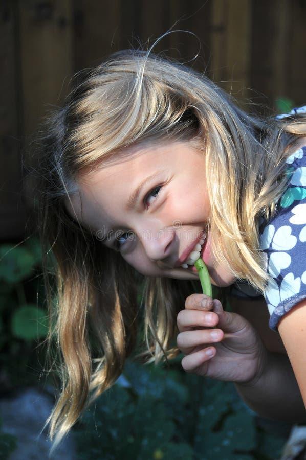 Girl in a garden eating a string bean stock photos