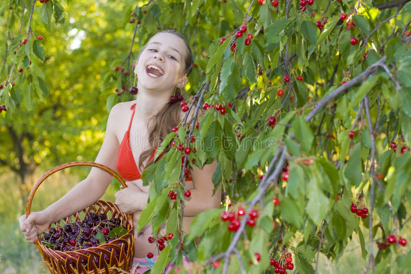 Download Girl In Garden With A Sweet Cherry Basket Stock Image - Image: 33368535