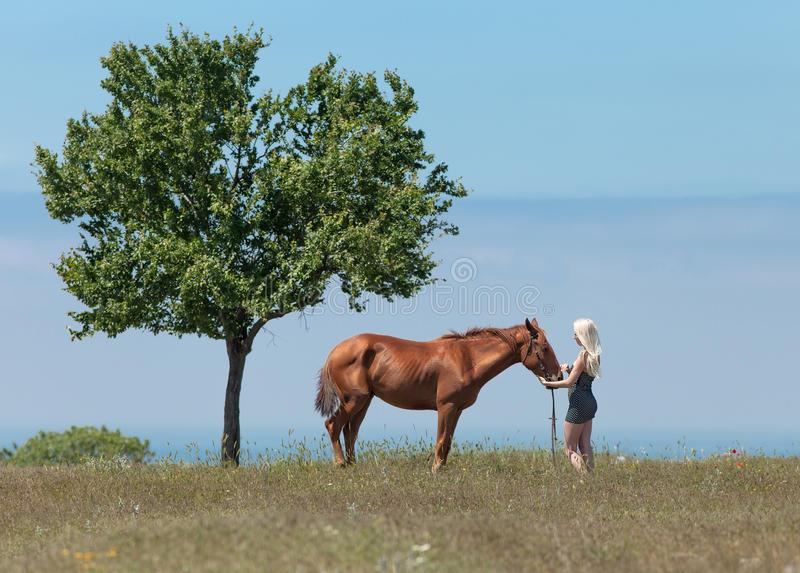 Girl, gelding and tree. Landscape with blonde woman, gelding and tree. Young blonde woman in polka-dot dress holding the reins of brown horse stock images