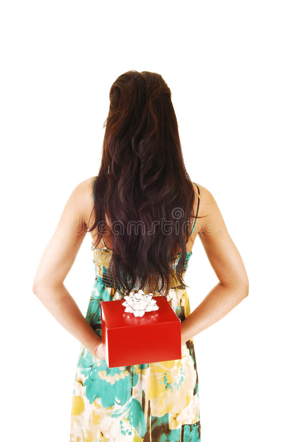 Girl with gift. royalty free stock photo