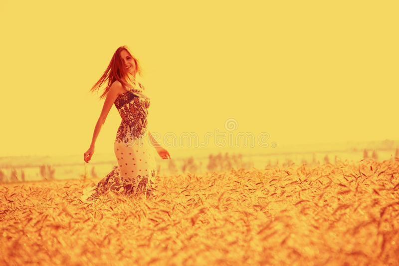Download Girl in golden cornfield stock photo. Image of caucasian - 25670670