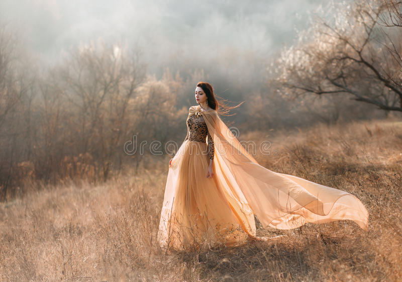 Girl in golden dress. Pretty brunette girl walks in the forest . She is dressed in luxurious, golden dress. The wind playing with her hair and fabrics. The stock images