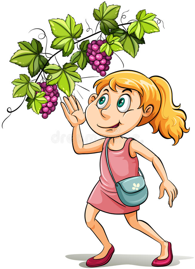 A girl and a grapevine royalty free illustration