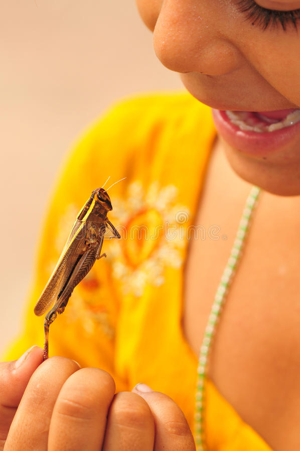 Girl with grasshopper stock photos