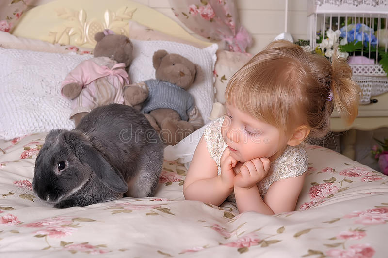 Girl with gray rabbit stock images