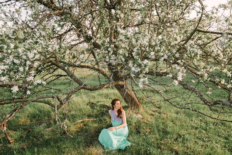 A girl in spring in a flowering apple orchard sits under the crown of an apple tree. A girl in a green and purple dress, with long hair in a spring apple garden royalty free stock photography