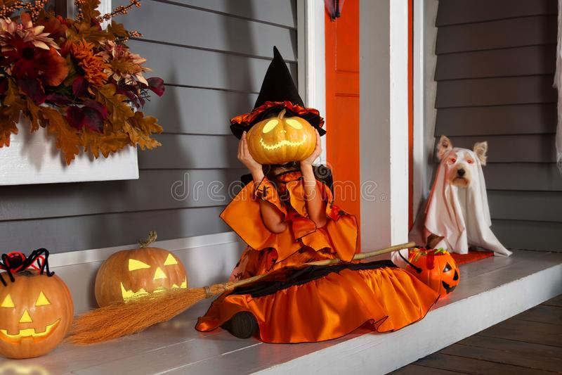 Girl in halloween costume with dog. Young funny girl child kid in halloween orange costume playing outdoor with spooky lantern jack pumpkins with scary faces and stock photo