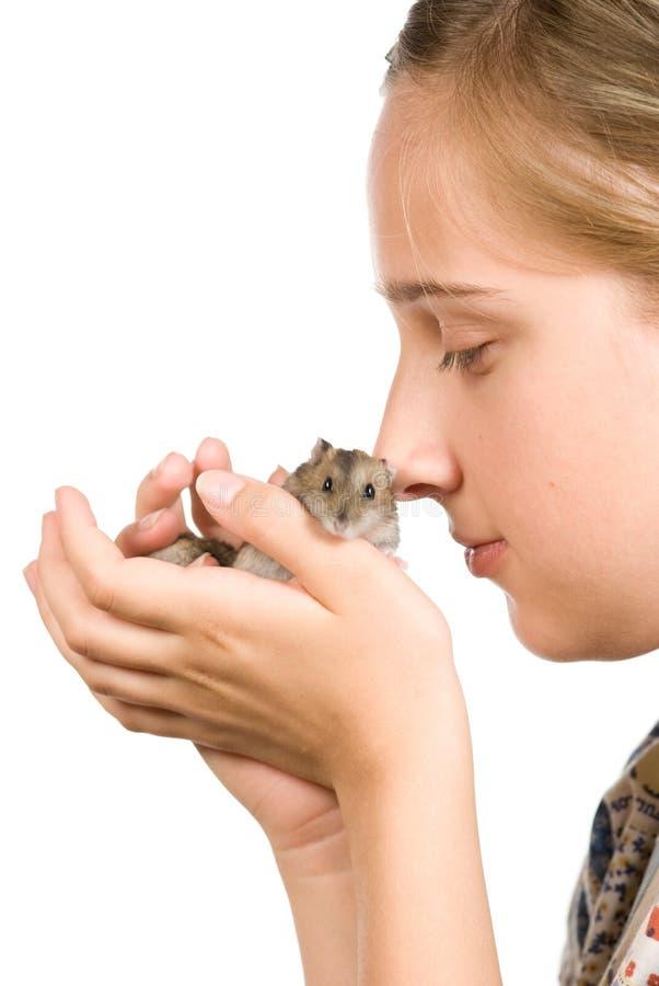 Girl and hamster stock photos