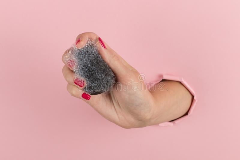 Girl hand holds a beauty blender for makeup from a hole in a pink background, copy space. Sponge in soapy foam, how to clean. Girl hand holds a beauty blender stock photo