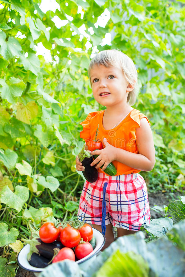 Girl with harvest vegetables royalty free stock image