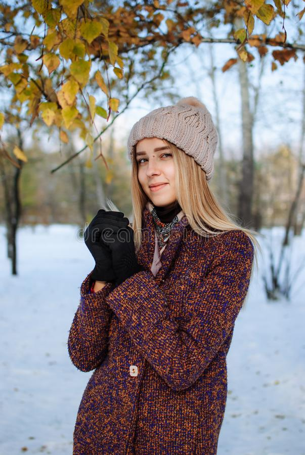 Girl enjoying first snow. Girl in hat and coat enjoying first snow in park royalty free stock photo