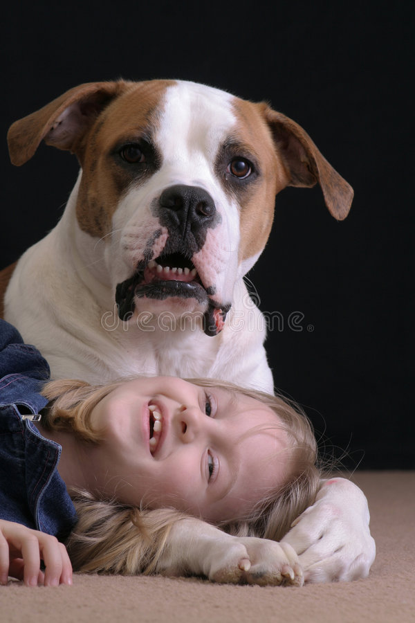 Girl and her dog. A little girl lays down under her cute puppy, an American Bulldog