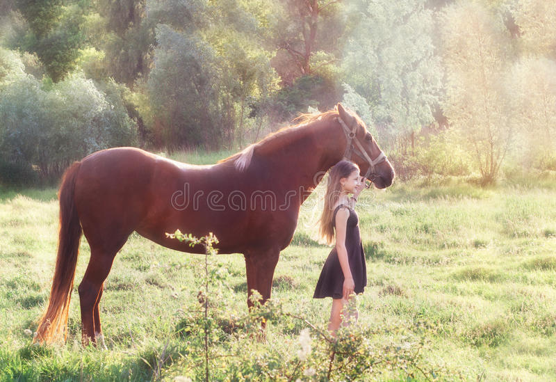 Girl and her horse on the sunlit field. Girl leads her horse on the sunlit field stock photo