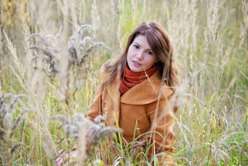 The girl among a high grass stock photos