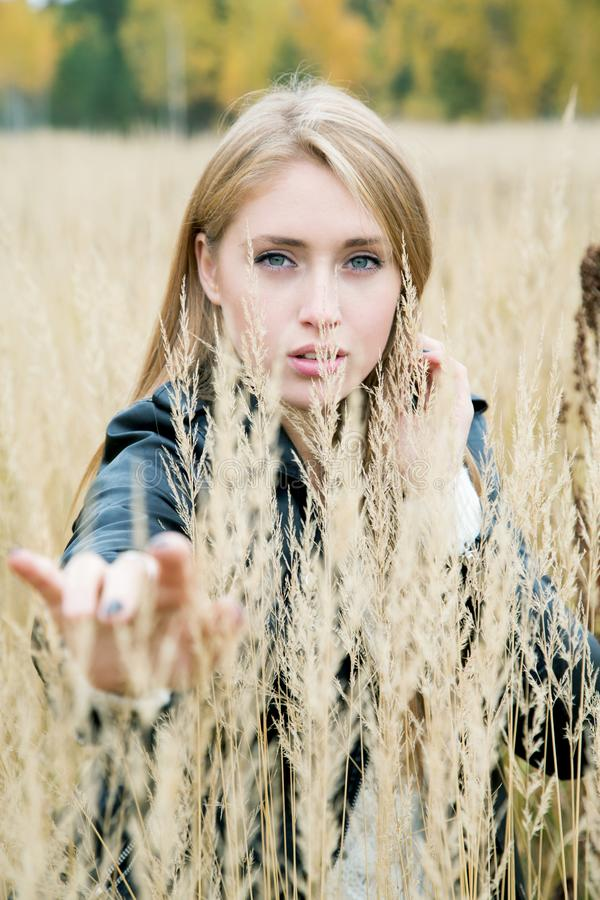Girl among the high yellow grass in the autumn. Afternoon stock images