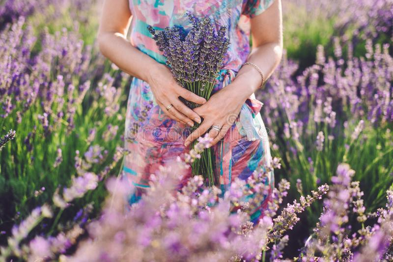 Girl Holding Bouquet on Lavender Field stock photo