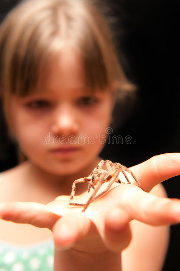 Free Girl Holding Brown Spider On The Palm Of Her Hand Stock Image - 16638301