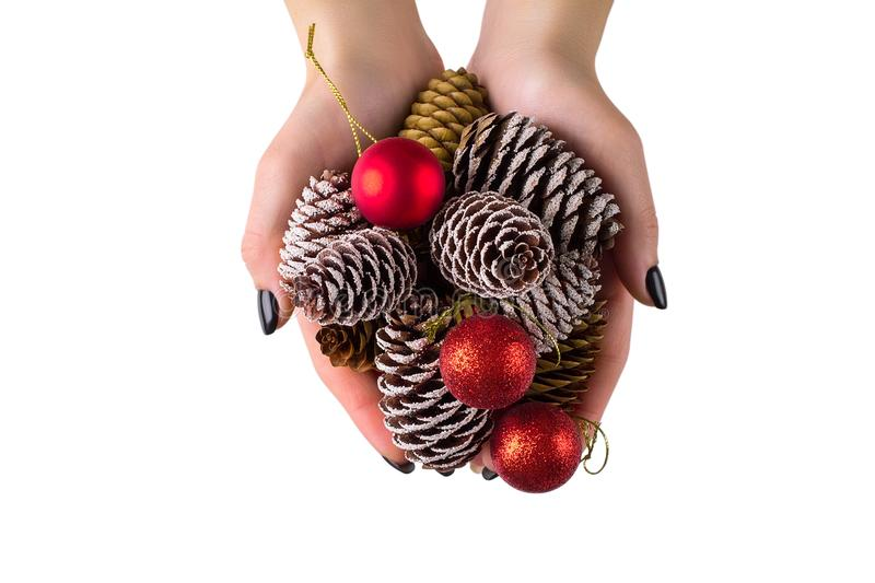 Girl holding a Christmas tree cone. close-up stock image