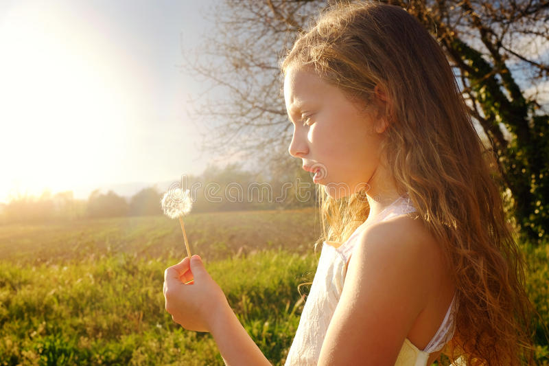 Girl holding dandelion at sunset. stock photo