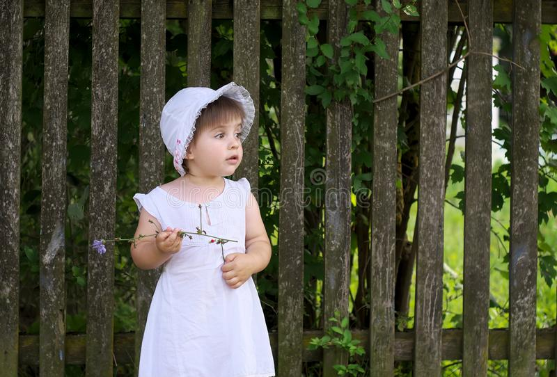 Girl holding a flower standing near the fence stock images