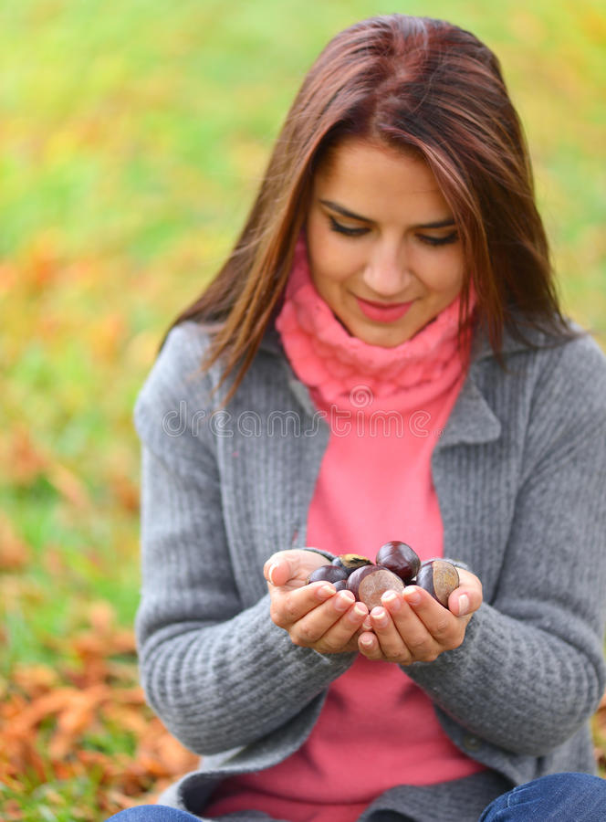 Girl holding many chestnuts in her hands stock image