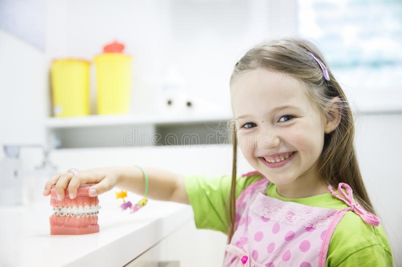 Girl holding model of human jaw with dental braces stock images