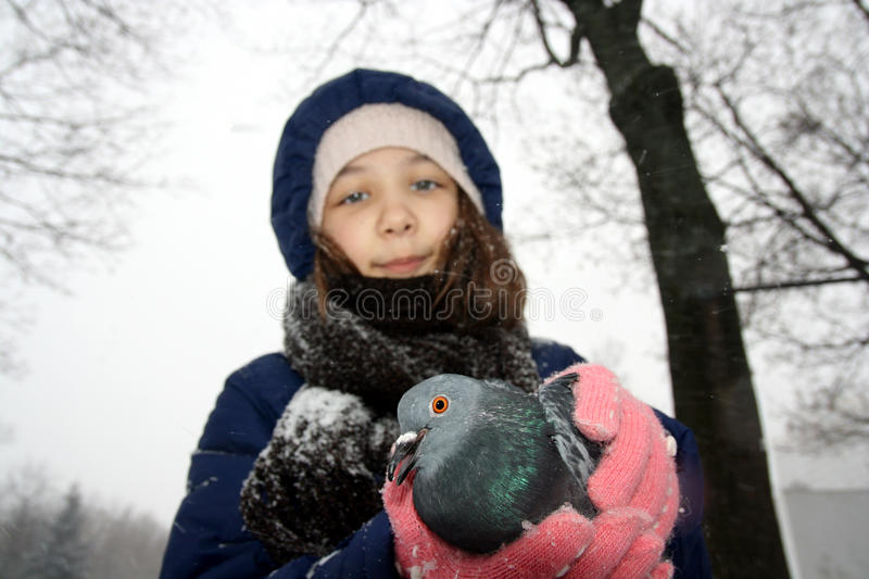 Girl Holding Pigeon Royalty Free Stock Photography