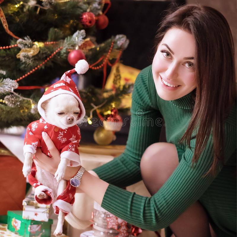 Happy young girl with a dog in the clothes of Santa Claus in her arms against the background of the celebratory Christmas tree. royalty free stock images