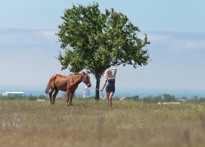 Girl holding reins of horse. Landscape with blonde woman, gelding and tree. Young blonde woman in polka-dot dress holding the reins of brown horse stock photography
