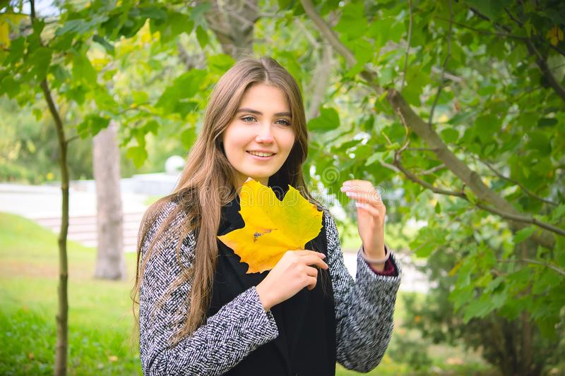 Girl holding yellow leaf, looking through hole autumn background royalty free stock photos