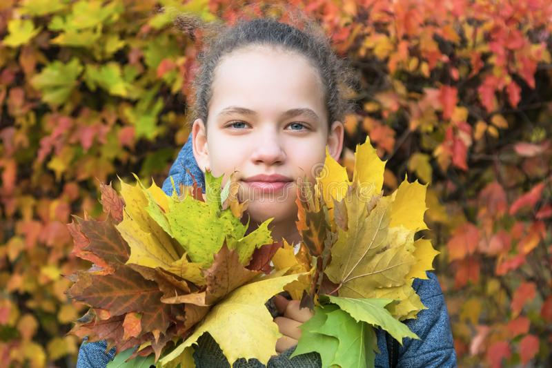 Girl holds bouquet in hand against the background of autumn leaves stock photos