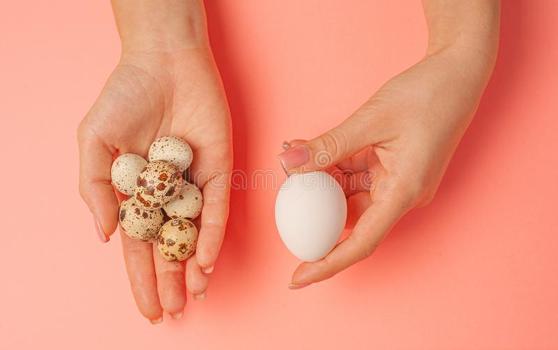 The girl holds in hands a lot of quail eggs. Close up on a pink background with place for text.  royalty free stock images
