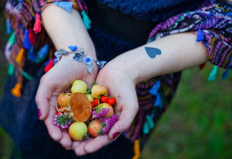 The girl holds in her hands berries royalty free stock photography