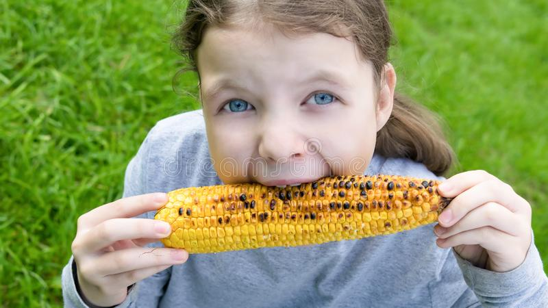 Girl holds in her hands a roasted corn cob and bites her teeth stock photo