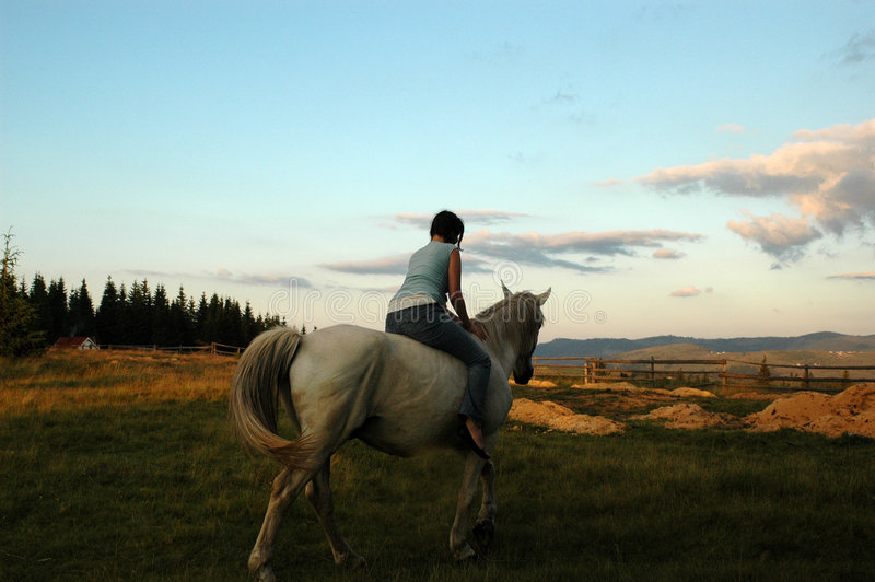 Girl & horse royalty free stock images