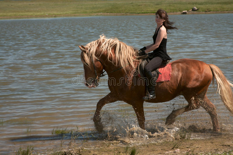 Girl on a horse. Horsewoman on a brown horse goes on edge of a reservoir royalty free stock images