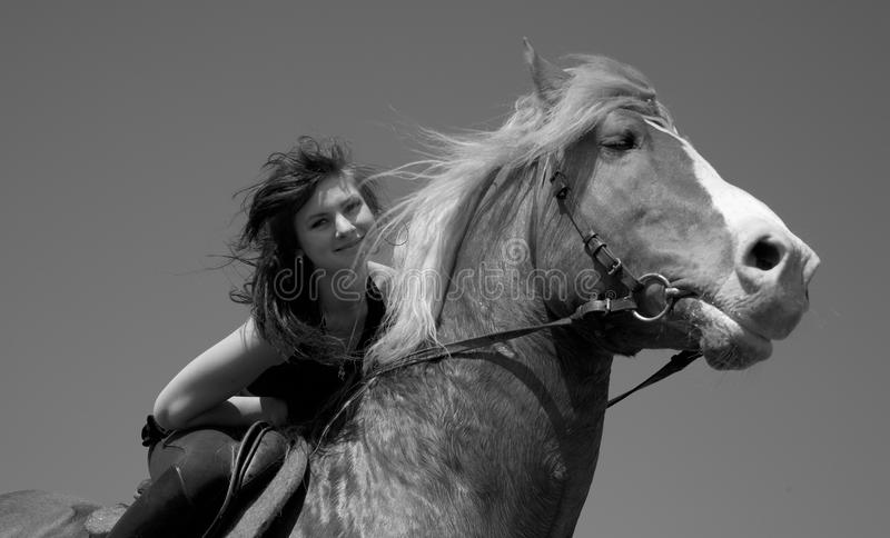Girl on a horse. Horsewoman on a brown horse walk on a wild meadow royalty free stock photography