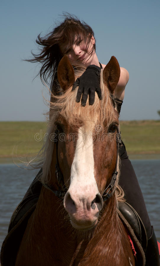Girl on a horse. Horsewoman on a brown horse walk on a wild meadow stock image