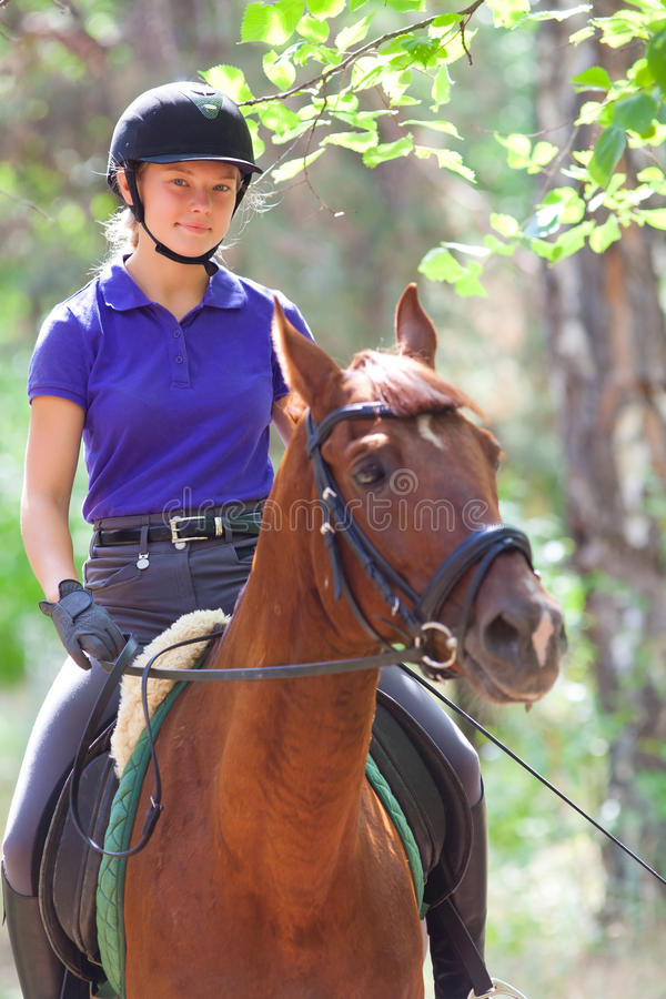Girl on horse. Portrait of young horsewoman and brown horse stock photo