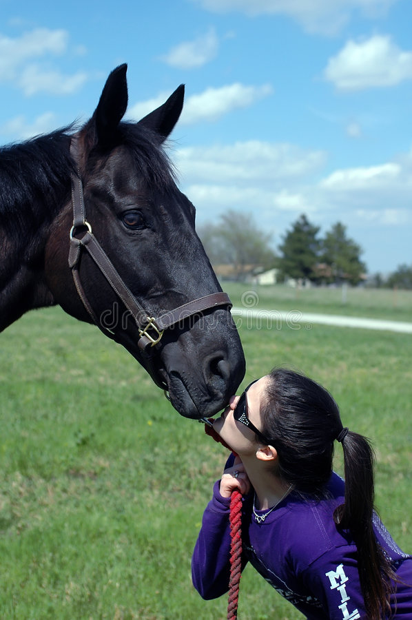 Download Girl And Horse Stock Image - Image: 3740691