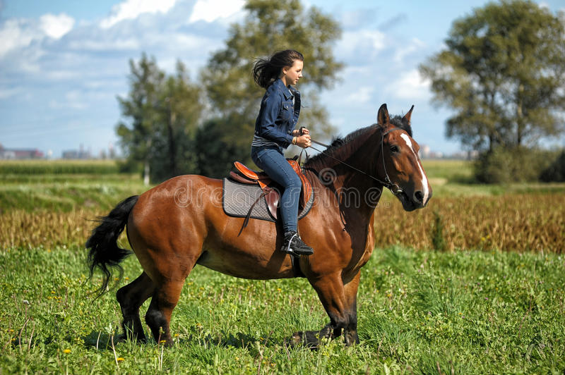 Girl on a horse. Girl in jeans suit on a horse stock photography