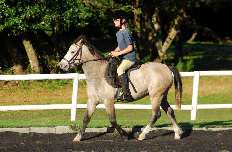 Girl in horse riding lesson stock photos