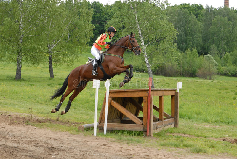 Girl horseback on jumping red chestnut horse. Kuz'mina Anastasija on Pavian Event: Cup of Russia, Superiority among Young Rider Category: CCI 1*/2*, CIC 2*/3* stock photo