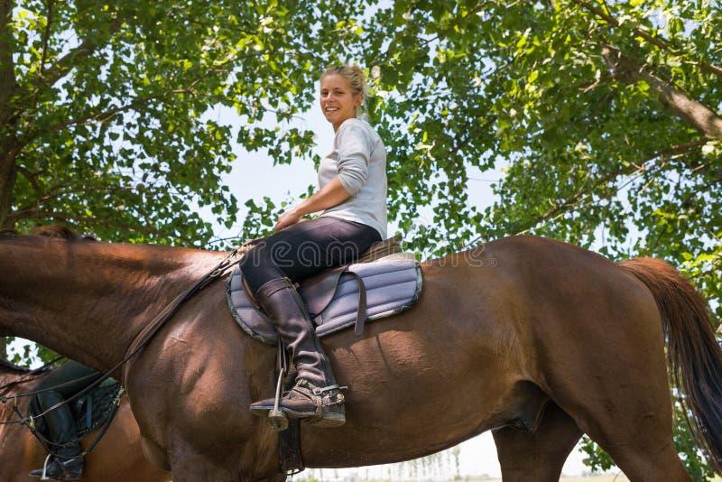 Girl on horseback riding stock photos
