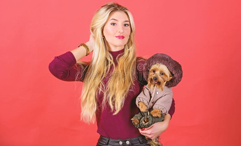Girl hug little dog in coat. Woman carry yorkshire terrier. Make sure dog feel comfortable in clothes. Apparel and stock photo