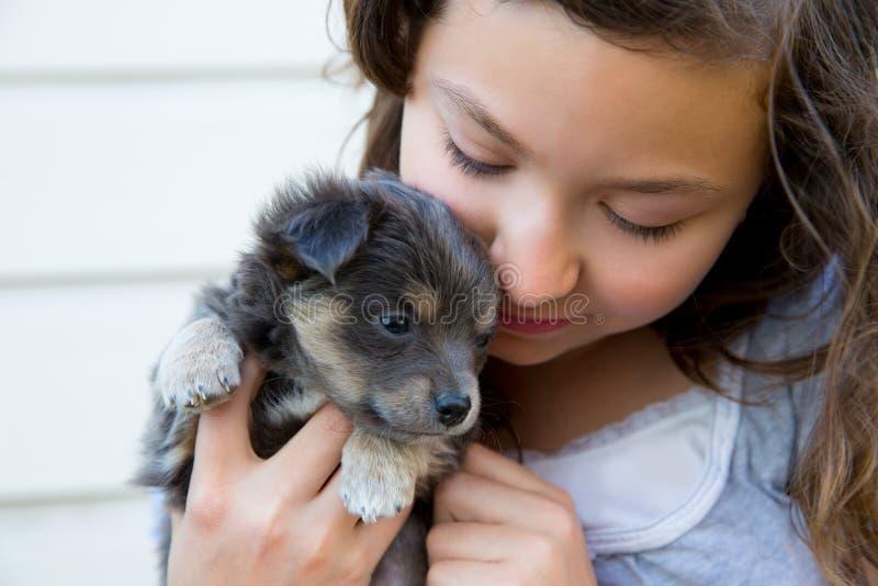 Girl hug a little puppy dog gray hairy chihuahua. Doggy stock photo