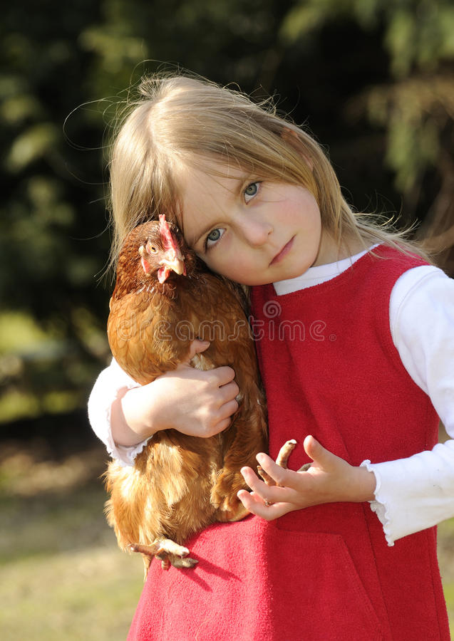 Download Girl hugging a chicken stock photo. Image of white, outdoor - 18926260